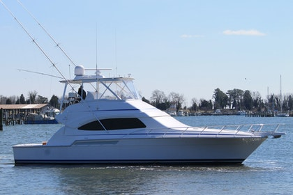 photo of 51' Bertram 510 Convertible 2008