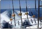 Bertram-Sport Fishing Motor Yacht 1971-Sundance La Paz-Mexico-Looking Aft-387357 | Thumbnail