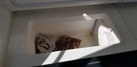 Riviera-Convertible Sport Fisherman 2004-Sol Mate South Padre Island-Texas-United States-Freezer-1075637   Thumbnail