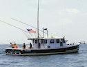 Willis Beal-RP40 2003-Aurora Marie Long Island-New York-United States-Fishing-1093225 | Thumbnail
