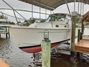 Back Cove-Express 2007-Patronus Cape Coral-Florida-United States-Port Bow View-1341489 | Thumbnail