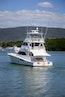 Viking-76 Enclosed Skybridge 2012-Reel Power Palm Beach-Florida-United States-1346548 | Thumbnail