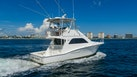 Cabo-Fly 2009-Eight Mates Boca Raton-Florida-United States-1486183   Thumbnail
