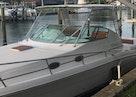 Stamas-370 Express 2001-Stamas 370 Express Tampa Bay-Florida-United States-1524957   Thumbnail