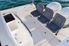 Axopar-37 Sun Top Revolution 2021-Axopar 37 Sun Top Revolution Tampa Bay-Florida-United States-1531608 | Thumbnail