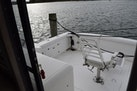 Bertram-37 Sportfish Convertible 1987-Jillyfish Cedar Point-North Carolina-United States-1537880 | Thumbnail