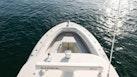 Hydra-Sports 2013 -Miami Beach-Florida-United States-1554824 | Thumbnail