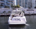 Sea Ray-460 Sundancer 2002-The Payoff Key Biscayne-Florida-United States-Stern View-1569344 | Thumbnail