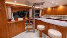 Viking 2014-BEBA Fort Lauderdale-Florida-United States-1569534   Thumbnail