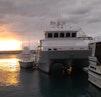 Theriault & Son-Custom Catamaran 2000-Slumber Venture Fort Lauderdale-Florida-United States-1598311   Thumbnail