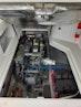 Back Cove-Express 2007-Patronus Cape Coral-Florida-United States-Yanmar Engine-1596419 | Thumbnail
