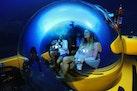 Triton-1650/3LP Submarine 2018 -Vero Beach-Florida-United States-1607255 | Thumbnail