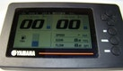Intrepid-322 Cuddy 2001-Sea Life Marathon-Florida-United States-1628913 | Thumbnail