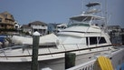 Bertram-Convertible 1986-Out on a Limb Ocean City-New Jersey-United States-1631513 | Thumbnail