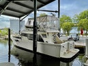 Mikelson-50 Sportfisher 1995-The Turks Steamer Chester-Maryland-United States-1685474   Thumbnail