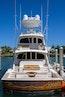 Viking 2016-COMPLETELY KNOTS Stuart-Florida-United States-1706186 | Thumbnail