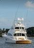 Viking 2016-COMPLETELY KNOTS Stuart-Florida-United States-1706137 | Thumbnail